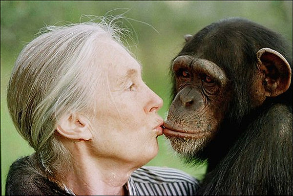 Jane Goodall: a little girl who loved animals and grew up ...