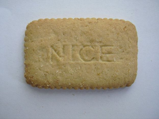 Rectangular plain biscuit with the word 'NICE' baked into it