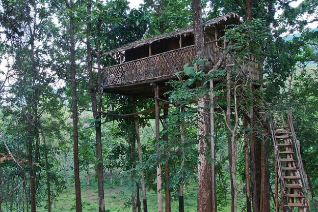 A rickety-looking treehouse